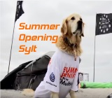 ruegen-kite-surf-cup-sylt